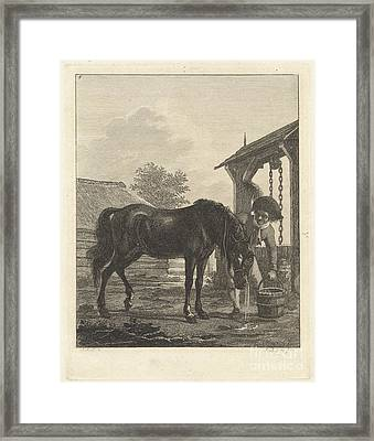 Man Shows A Horse Drinking From A Bucket Framed Print