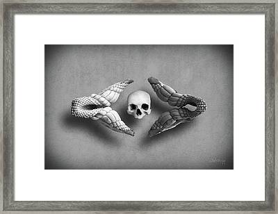 Man Vs Shark Framed Print by Joseph Westrupp