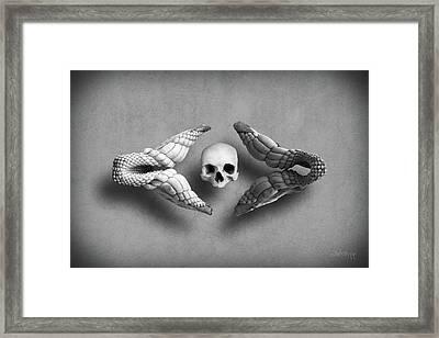 Man Vs Shark Framed Print