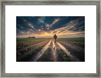 Framed Print featuring the photograph Man Watching Sunrise In Tulip Field by William Lee