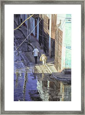 Man With Donkey On Street Cuba Framed Print