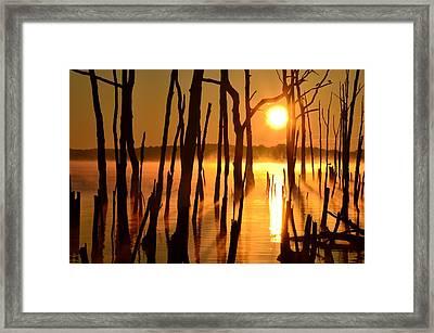 Manasquan Reservoir Sunrise Framed Print