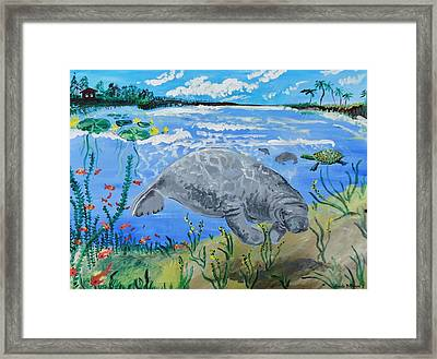 manatee in the Lagoon Framed Print by Renate Pampel