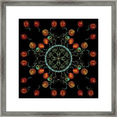Mandala - 0006 - Floating Free Framed Print by Wetdryvac Net