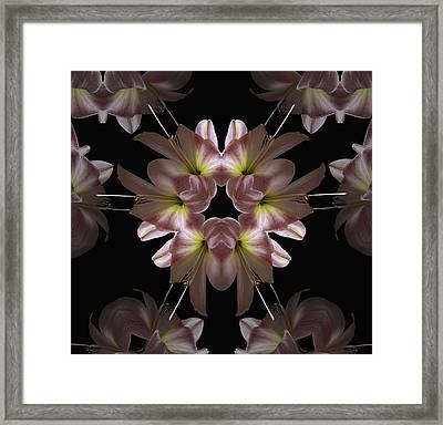 Framed Print featuring the digital art Mandala Amarylis by Nancy Griswold