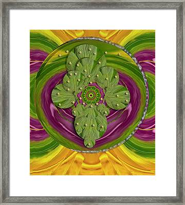 Mandala Art Framed Print by Pepita Selles
