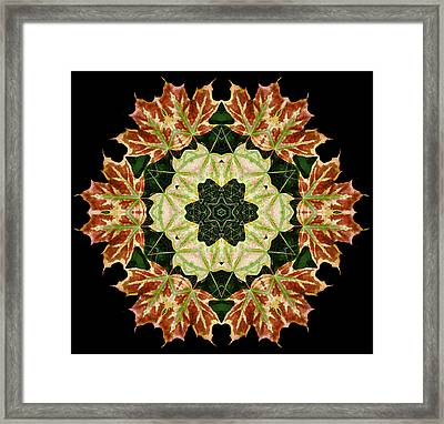 Mandala Autumn Star Framed Print