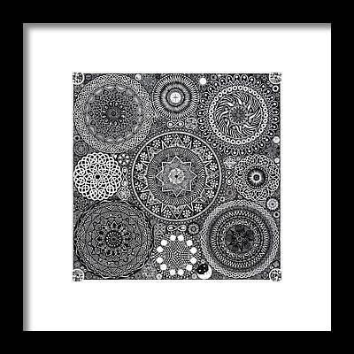 Mushroom Framed Prints