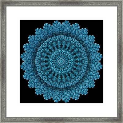 Framed Print featuring the digital art Mandala For The Masses by Lyle Hatch
