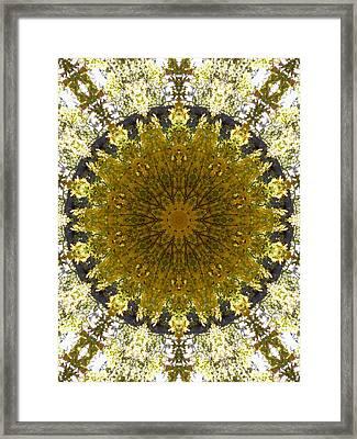 Mandala Kaleidoscopic Design 18 Framed Print by Lanjee Chee