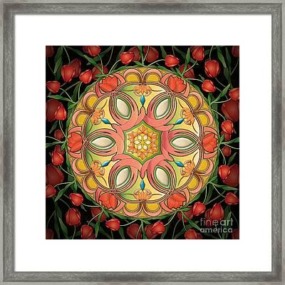 Mandala Tulipa Framed Print by Bedros Awak