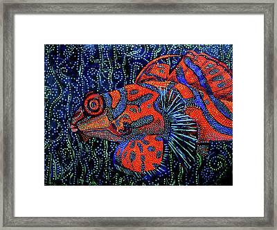 Dreamtime Mandarin Framed Print