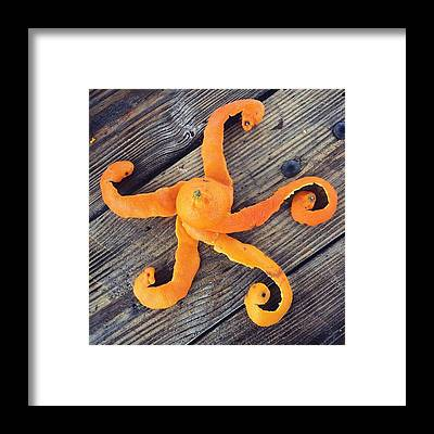 Octopus Framed Prints
