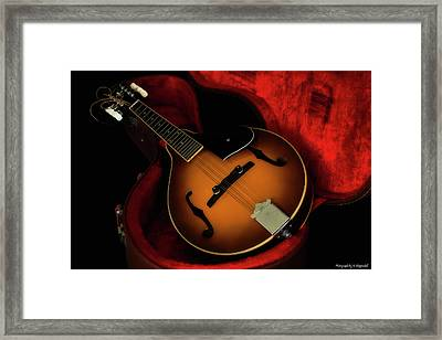 Mandolin Guitar 66661 Framed Print