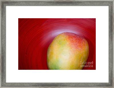 Mango Close-up Framed Print by Ray Laskowitz - Printscapes