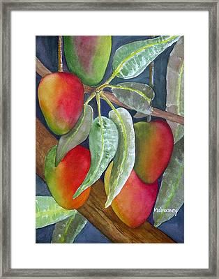 Mango One Framed Print by Terry Arroyo Mulrooney
