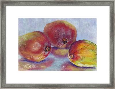 Mangos Framed Print by Carole Haslock