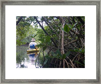 Mangrove Kayaker Framed Print by Steven Scott