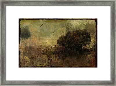 Mangrove Framed Print by Margaret Hormann Bfa