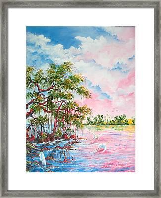 Mangroves Framed Print by Dennis Vebert
