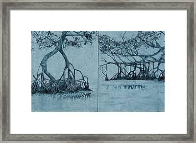 Mangroves Framed Print by Leah  Tomaino