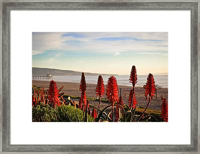 Manhattan Beach Framed Print by April Reppucci