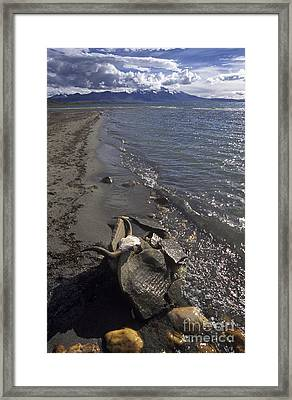 Mani Stone At Lake Manasarovar - Tibet Framed Print
