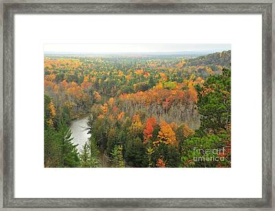 Manistee River Autumn Forests Framed Print
