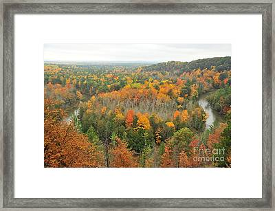 Manistee River Horseshoe Bend Framed Print