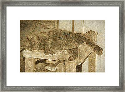 Mannie Is Relaxing Framed Print
