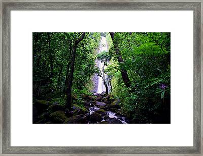 Manoa Falls Framed Print by Kevin Smith
