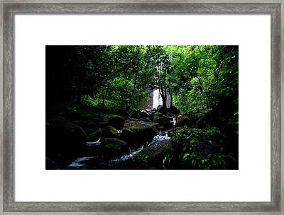 Manoa Falls Stream Framed Print by Kevin Smith