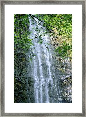 Manoa Valley Waterfall Framed Print