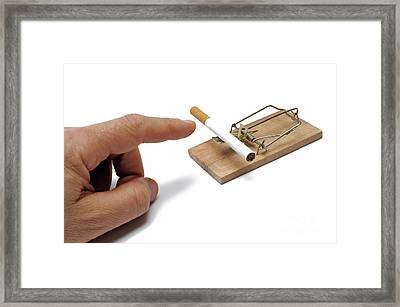 Man's Hand About To Catch Cigarette On Mousetrap Framed Print