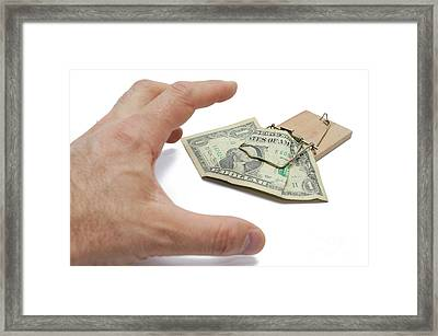 Man's Hand About To Catch Dollar Banknote On Mousetrap Framed Print