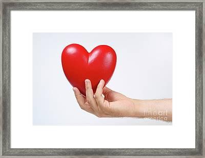Man's Hand Holding Heart-shaped Object Framed Print