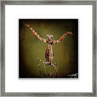 Mantis 28 Framed Print by Ingrid Smith-Johnsen