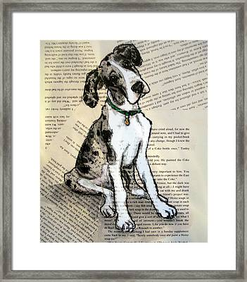 Mantle Merle Great Dane Puppy Nora Framed Print by Christas Designs