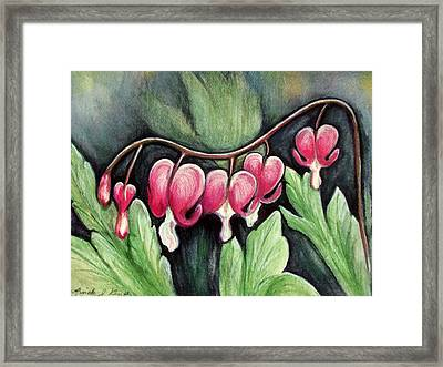 Many Bleeding Hearts Framed Print