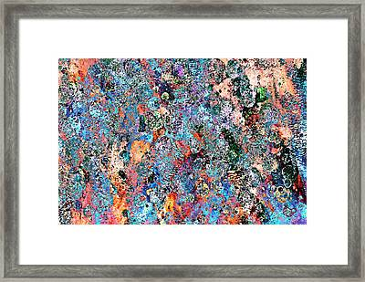 Many Colors Framed Print by Frank Tschakert