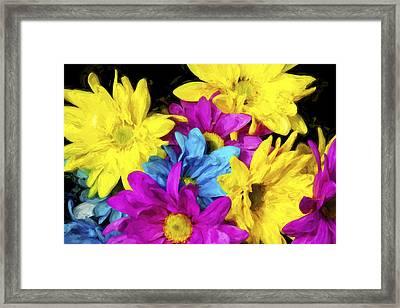 Many Colors II Framed Print by Jon Glaser