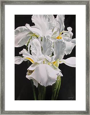 Many Shades Of White Framed Print