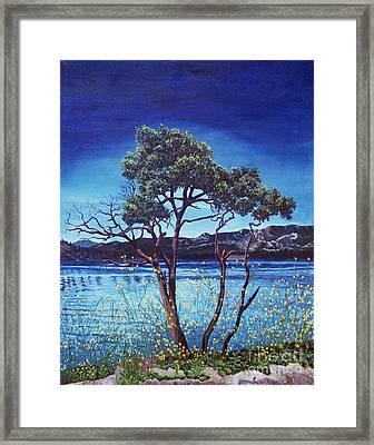 Manzanita At Lake Hemet Framed Print by Jiji Lee