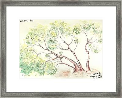 Framed Print featuring the painting Manzanita Tree by Maria Langgle