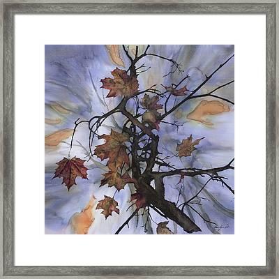 Maple Autumn Splash Framed Print