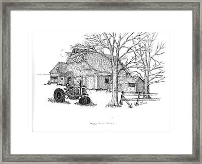 Maple Tree Farm Framed Print by Jack G  Brauer