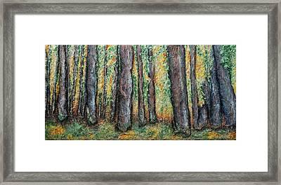 Maple Trees Framed Print by Alison  Galvan