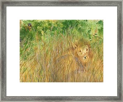 Framed Print featuring the painting Mara The Lioness by Vicki  Housel