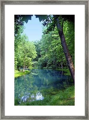 Maramec Springs 2 Framed Print by Marty Koch