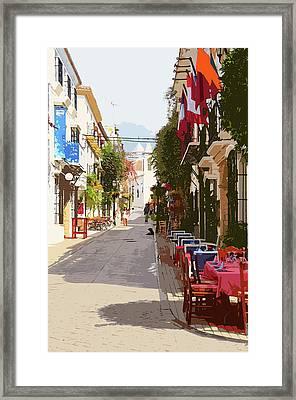 Marbella, Andalusia - 03 Framed Print by Andrea Mazzocchetti